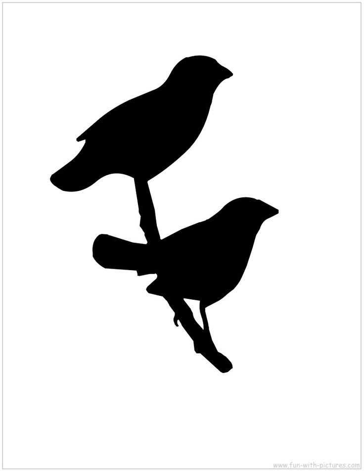 Bird Silhouette Stickers