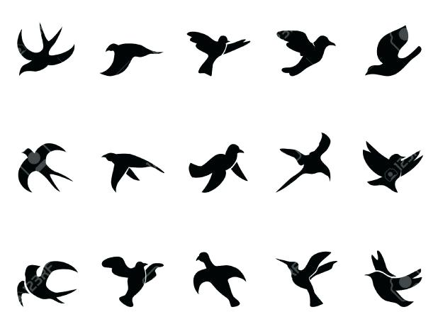 618x464 Coloring Inspiring Sparrow Outline Traditional Sparrow Outline