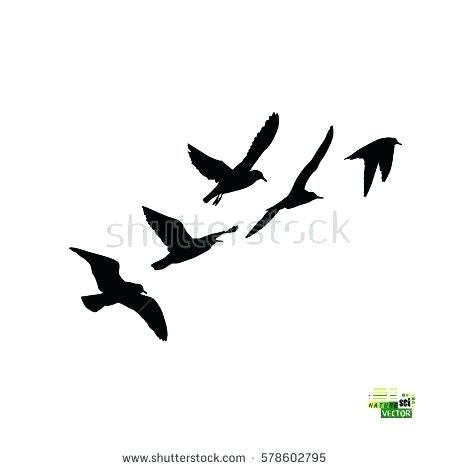 450x470 Dove Outlines Flock Of Birds Silhouette Vector Dove Tattoo Designs