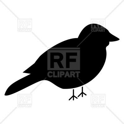400x400 Bird