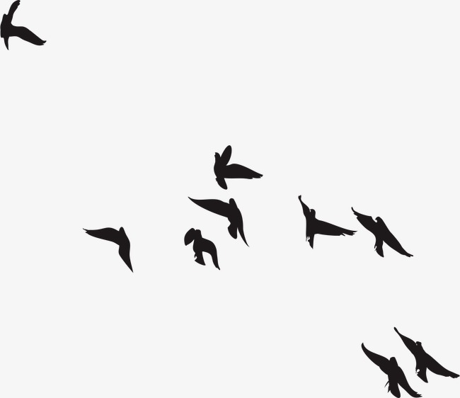 650x562 Birds Silhouette, Vector, Hand Painted, Ai Png And Vector For Free