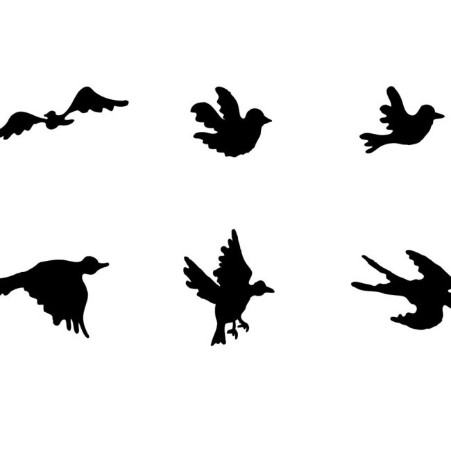 650x650 Free Vector Free Flying Bird Silhouette Vector Series