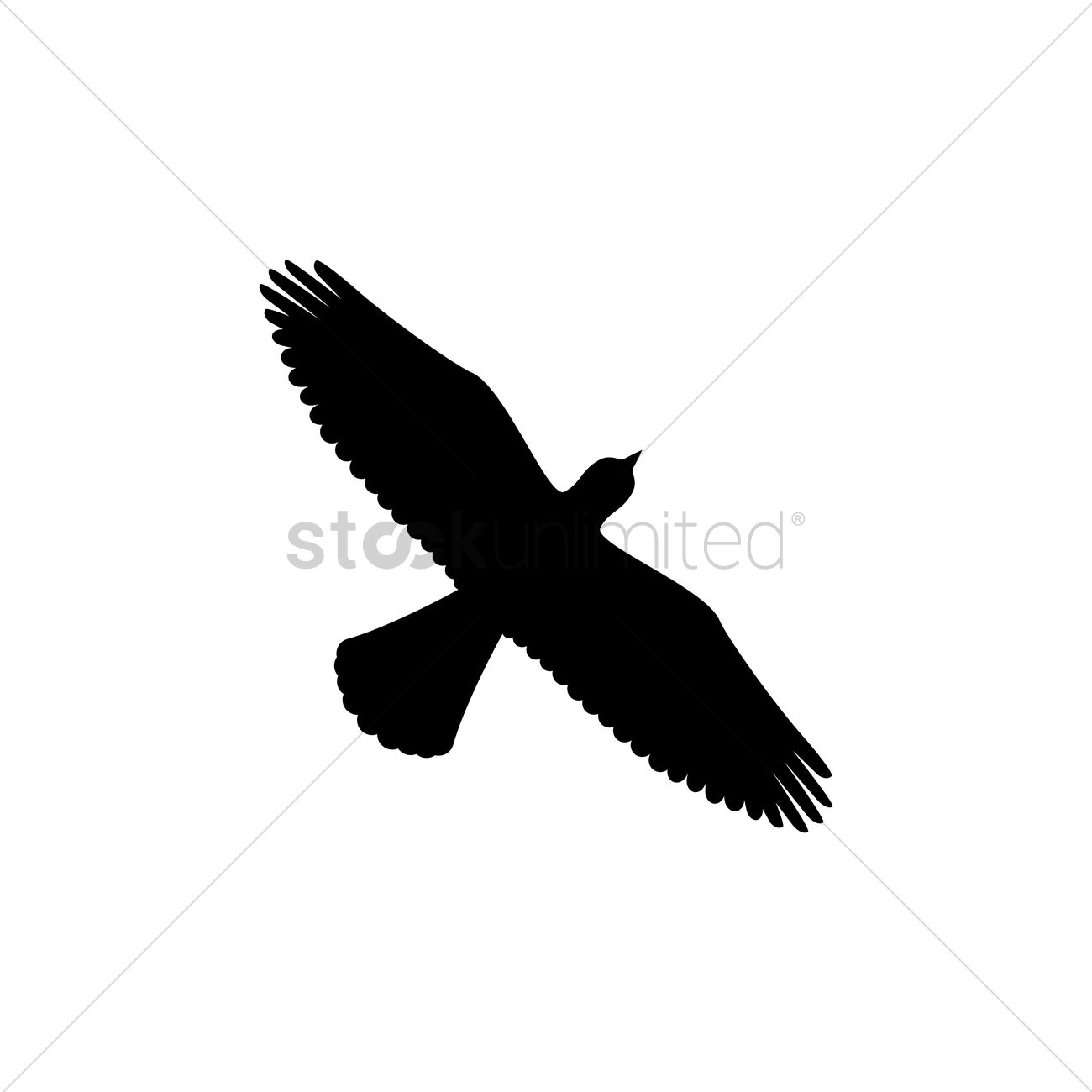 1300x1300 Top View Of Bird Silhouette Vector Image