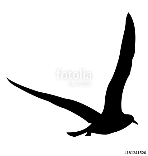 475x500 Bird Silhouette. Vector Eps 10. Stock Image And Royalty Free