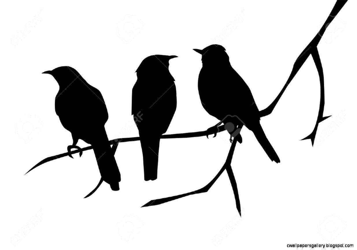 Bird Silhouette Wallpaper at GetDrawings | Free download