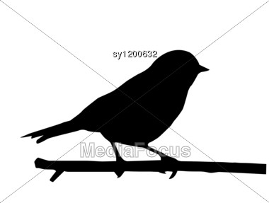 380x287 Silhouette Of The Small Bird On Branch