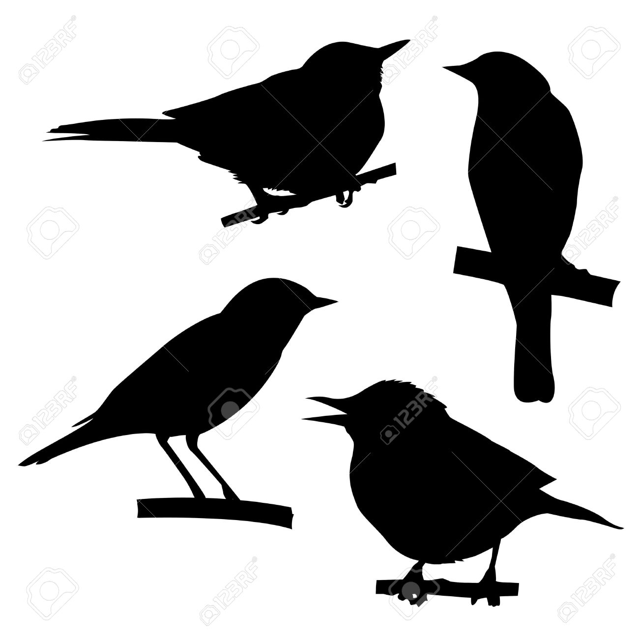 1300x1300 Silhouettes Of The Birds Sitting On Branch Tree Stock Photo