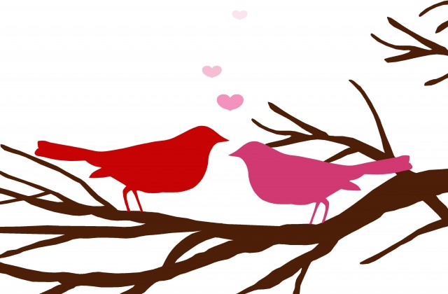 640x420 Tag For Love Bird Silhouette Birds In Tree Bird On Branch Clip