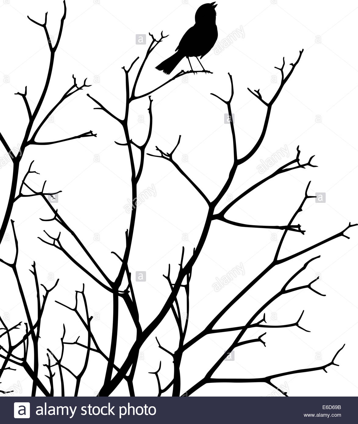 1174x1390 Editable Vector Silhouette Of A Bird Singing