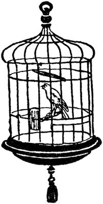 202x400 Birdcage Clipart Black And White