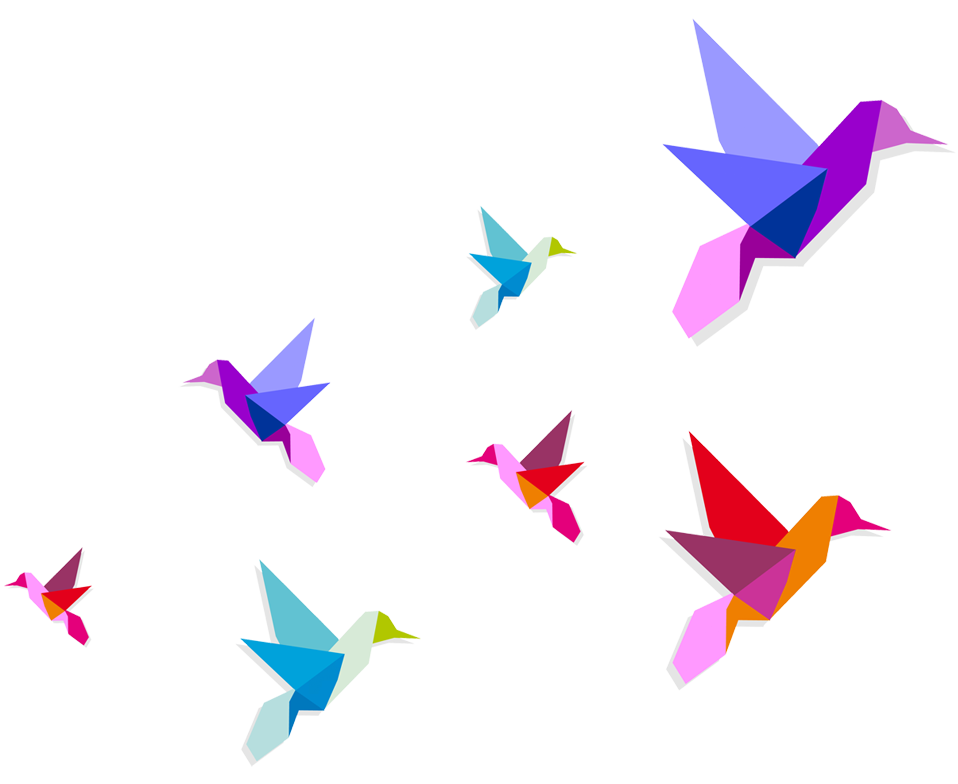 958x784 Birds Flying Silhouette