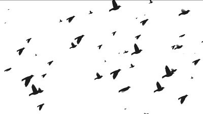 400x224 Flock Of Birds Flying Clipart