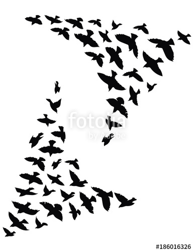 386x500 Silhouette Of A Flock Of Birds. Black Contours Of Flying Birds