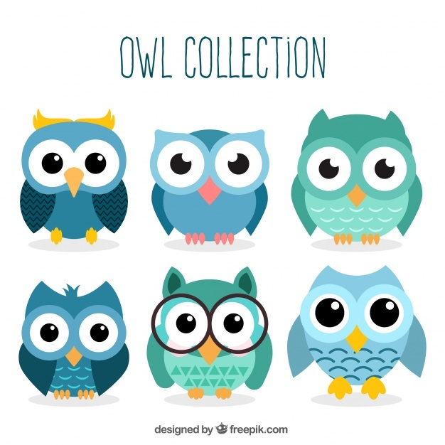 626x626 Owl Vectors, Photos And Psd Files Free Download
