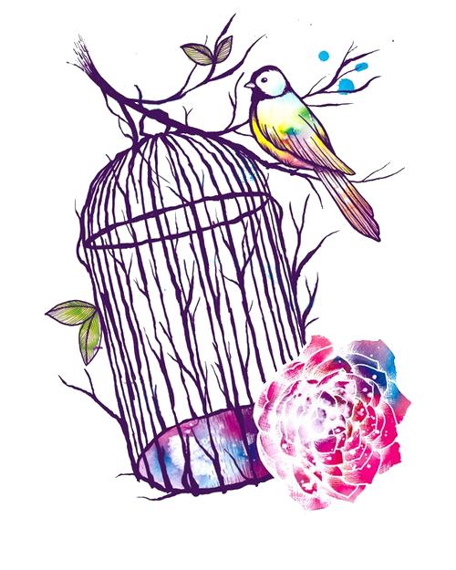 500x625 Bird Cage Drawing Tumblr