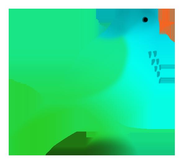 586x531 Drawings Of Birds