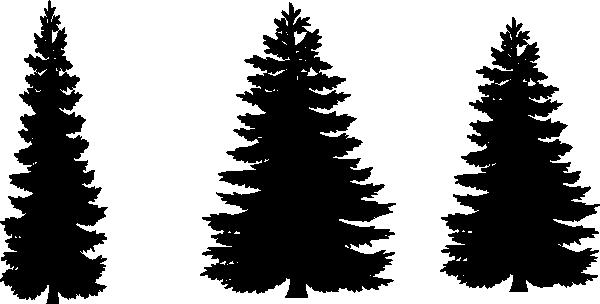 600x304 Pine Tree Outline Clipart 101 Clip Art