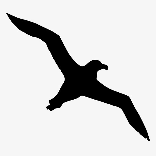 512x512 Seagull Silhouette, Bird, Flight, Animal Png Image And Clipart