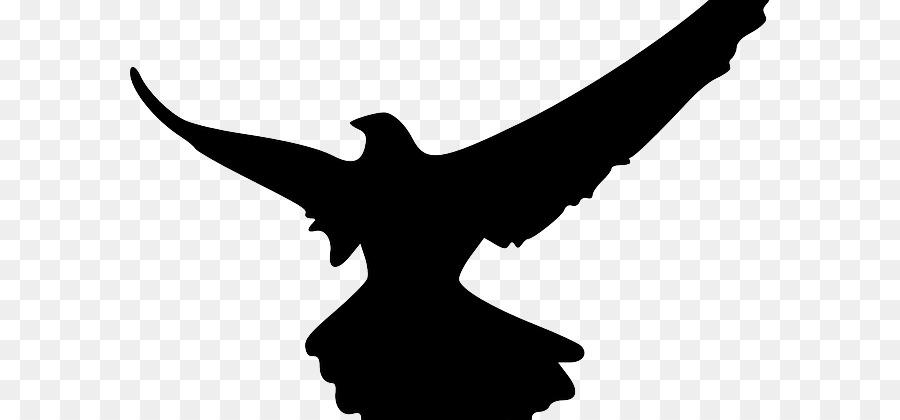 900x420 Silhouette Bird Falcon Clip Art
