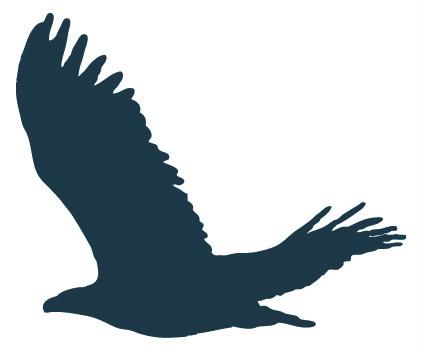 422x351 Silhouettes Of Birds Of Prey In Flight