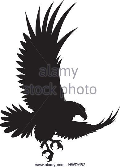 388x540 Bird Of Prey Silhouette Stock Photos Amp Bird Of Prey Silhouette