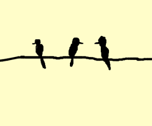 300x250 Birds On A Wire