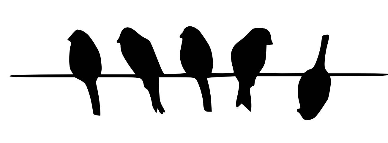 1306x482 Five Birds On Wire Stencil Made From 4 Ply Mat Board