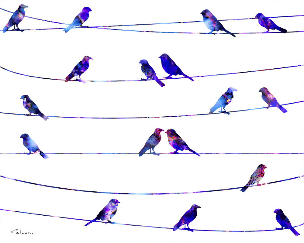 1000x800 Pretty Birds On A Wire Print Pictures Inspiration