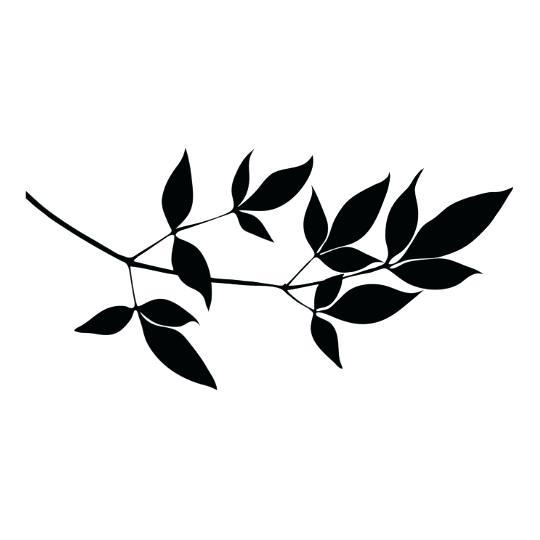 540x540 Branch Silhouette Tree Branch Silhouette Tattoo