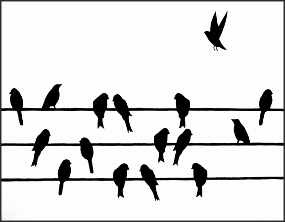 576x450 Silhouette Of Birds On Wire Hsnsd Beautiful Bird Silhouette