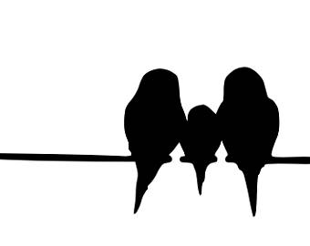 340x270 Strikingly Bird On A Wire Stencil Art Etsy