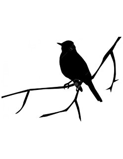 248x320 Pack Of 3 5 Birds On Wire Stencils Made From 4 Ply Mat