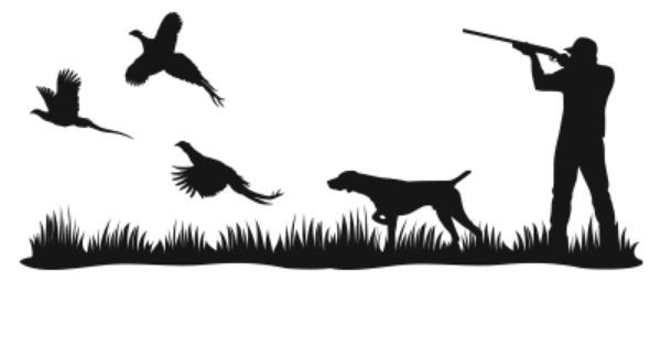 600x315 Ideas About Pheasant Hunting On Birdy Hunting