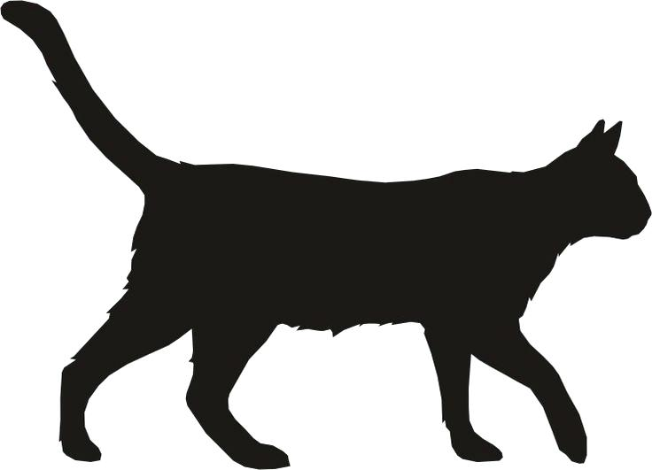 736x531 Cat Outlines Stock Images Royalty Free Images Vectors Black Cat