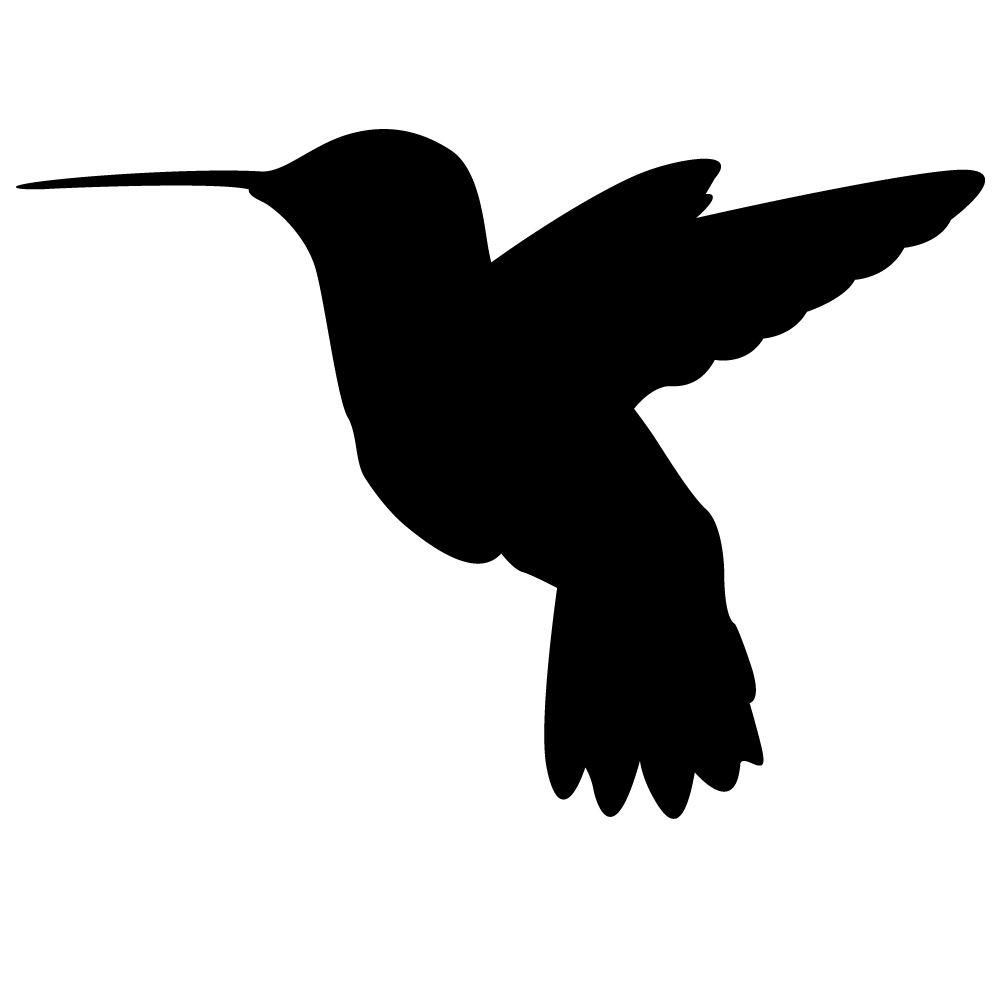1001x1001 Black Clipart Hummingbird