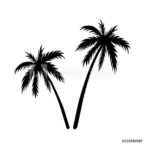 500x500 Two Palms Sketch. Black Coconut Tree Silhouette, Isolated On White