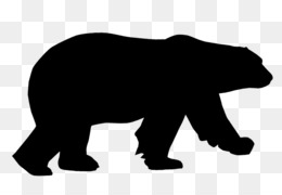 260x180 Brown Bear American Black Bear Polar Bear