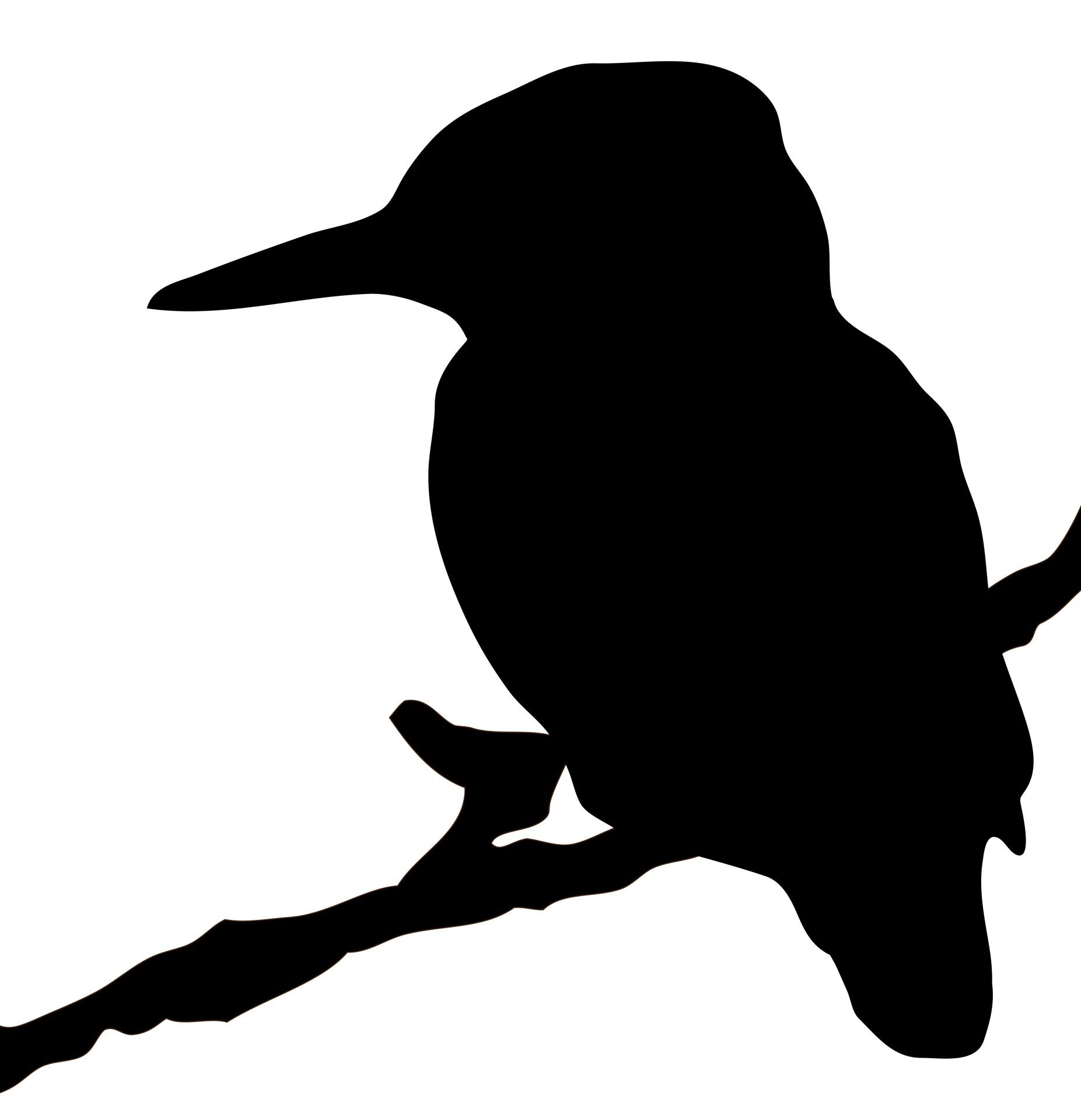 1853x1920 Kingfisher Bird Silhouette Clipart Free Stock Photo