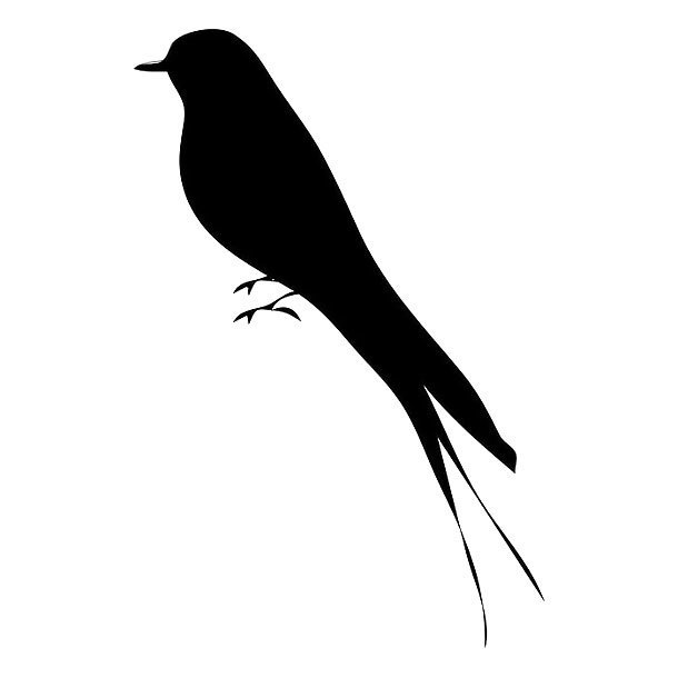 Black Bird Silhouette Tattoo At Getdrawings Free For Personal