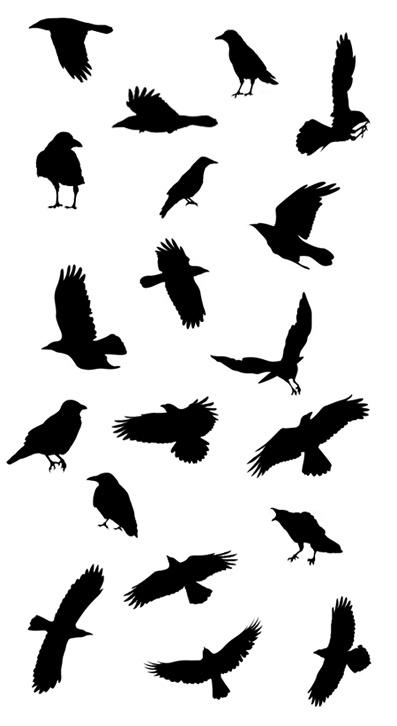397x726 Crows Ravens, Raven Tattoo Ideas, Bird Stencil, Crow Tattoo Ideas