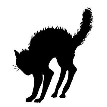 355x355 Halloween Black Cat Silhouette