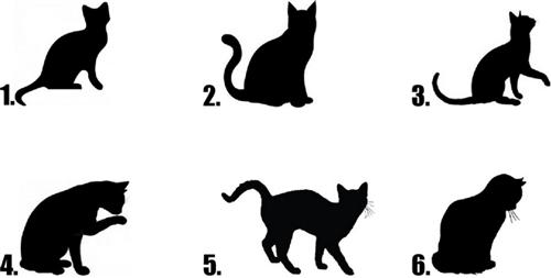 500x253 Black Cat Silhouette
