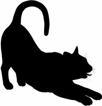 350x361 Black Cat Names What To Name A Black Cat. Black Cat Silhouette