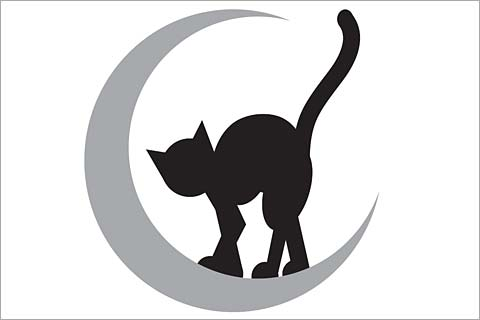 480x320 Black Cat Template Image Collections