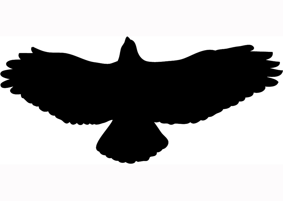 945x670 Flying Hawk Silhouette Clipart