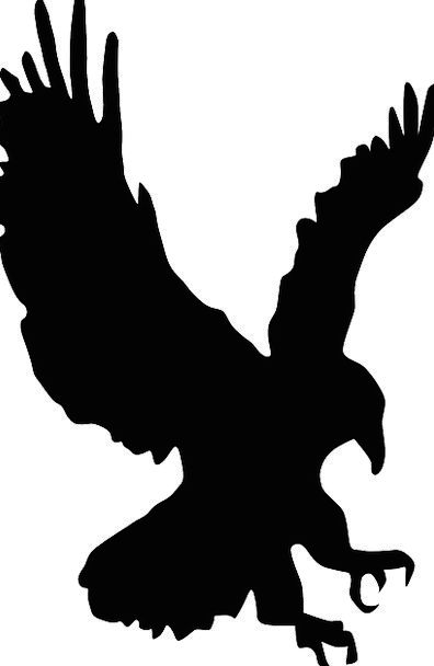 396x608 Hawk, Warmonger, Bird, Fowl, Eagle, Animal, Pray, Request, Black