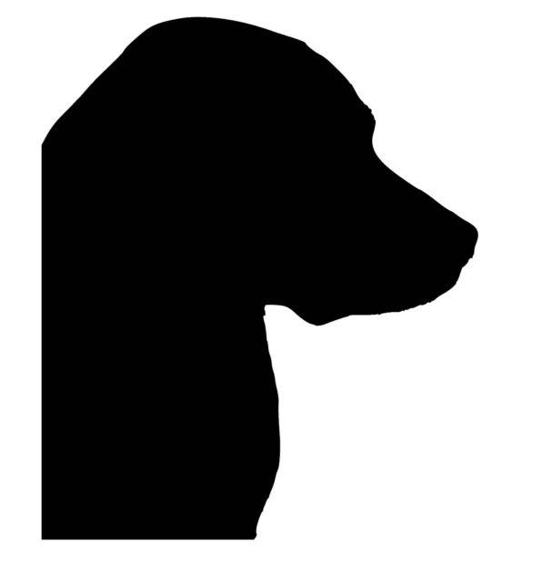 586x640 Labrador Head Silhouette Vinyl Car Stickerdecal Ebay