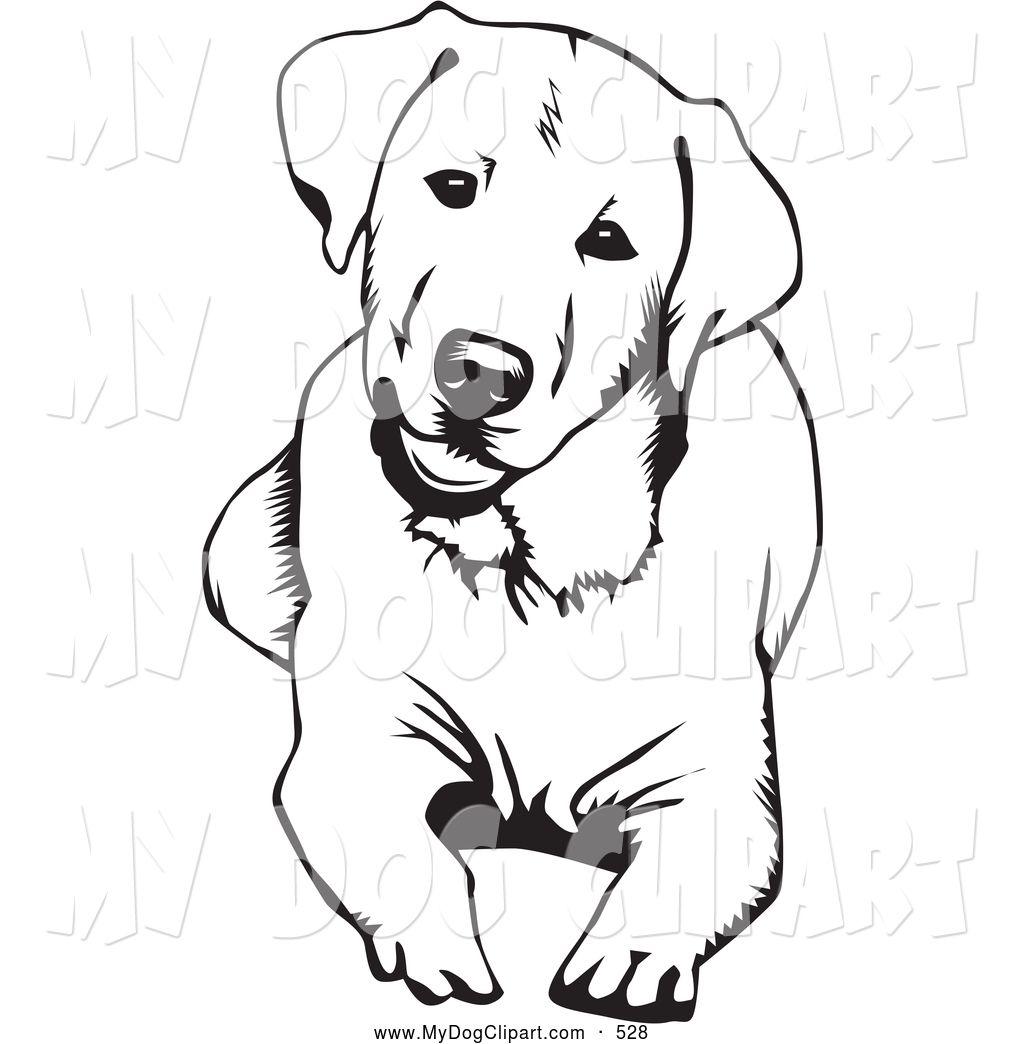 1024x1044 Clip Art Of A Cute And Curious Labrador Retriever Dog Lying Down