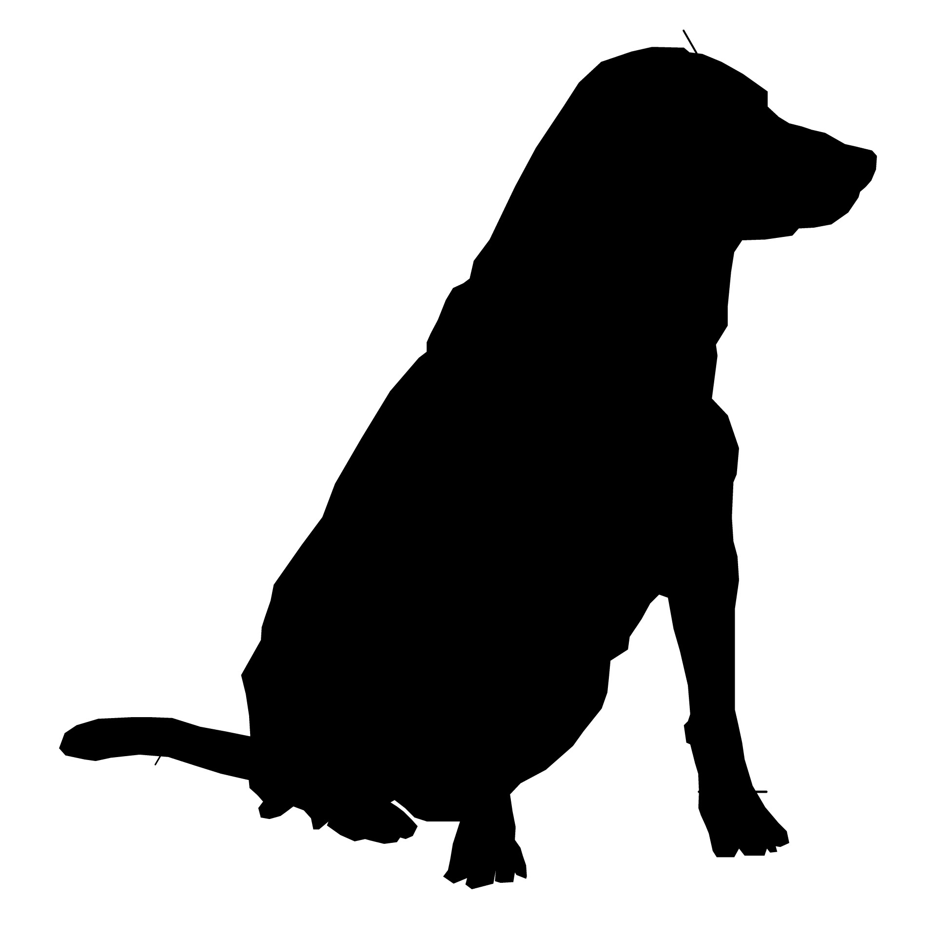 1920x1920 Dog Silhouette Drawing 01 Free Stock Photo