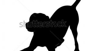 280x168 Labrador Retriever Silhouette Clip Art